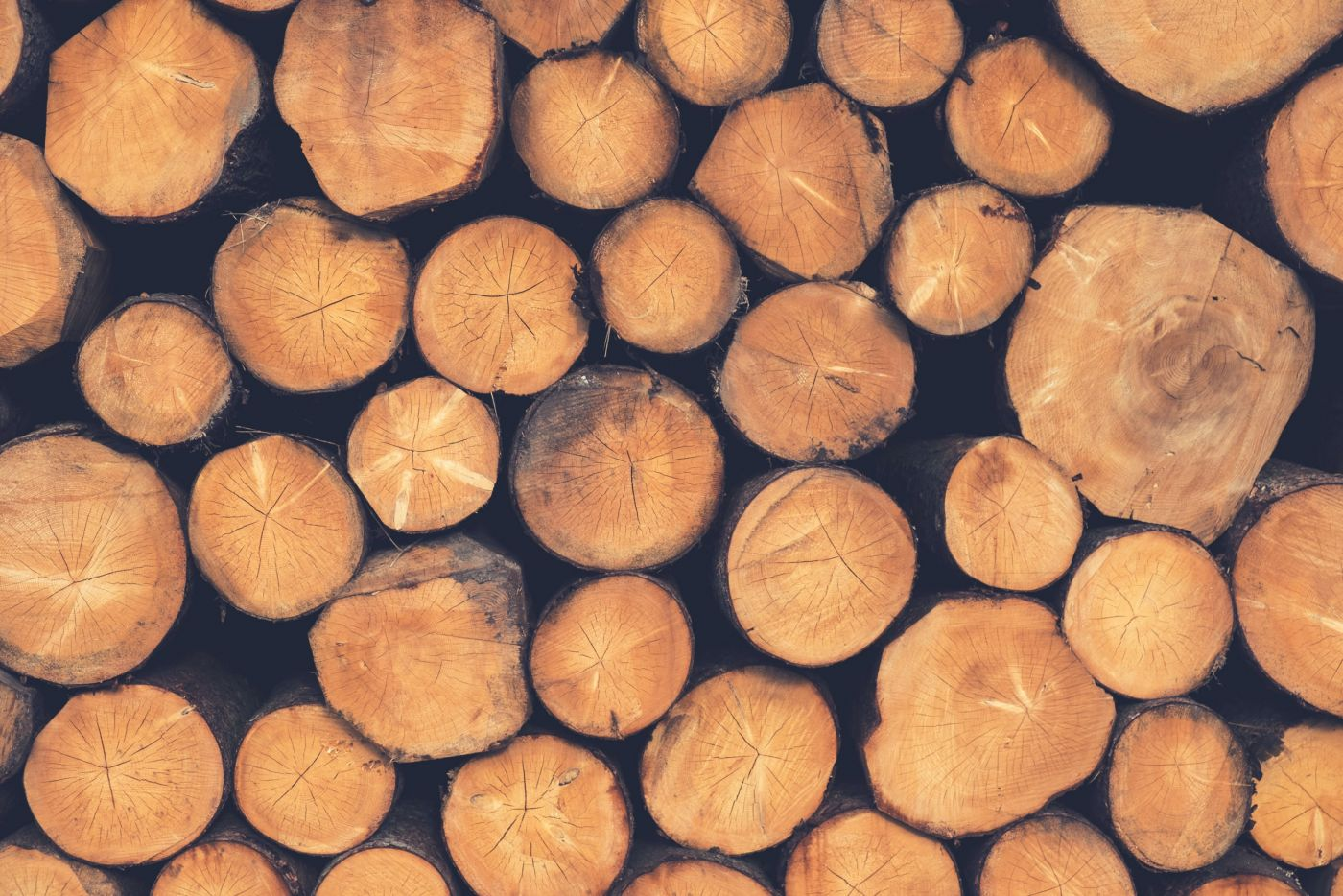 How is Timber Made?